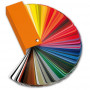 Arbonia Sonderfarbe für 2-Säuler H: 180 L: 54 cm